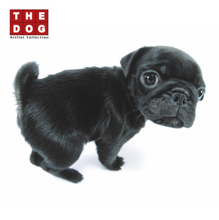 Picture of Artlist Collection- The Dog