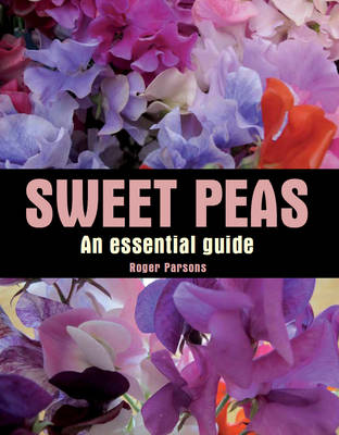 Picture of Sweet Peas: An Essential Guide