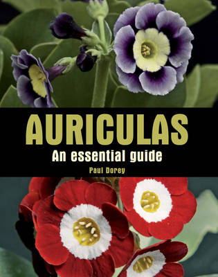 Picture of Auriculas: An Essential Guide