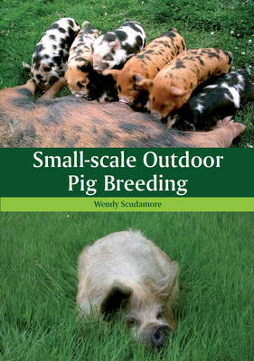 Picture of Small-Scale Outdoor Pig Breeding