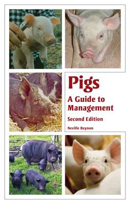 Picture of Pigs: A Guide to Management