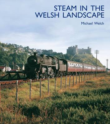 Picture of Steam in the Welsh Landscape