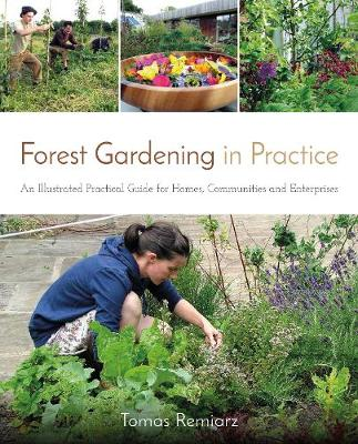 Picture of Forest Gardening in Practice: An Illustrated Practical Guide for Homes, Communities and Enterprises