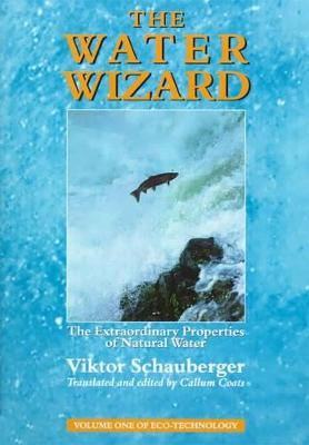 Picture of The Water Wizard: The Extraordinary Properties of Natural Water