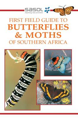 Picture of Butterflies and Moths of Southern Africa