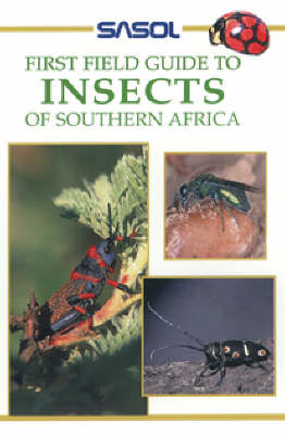 Picture of Insects of Southern Africa