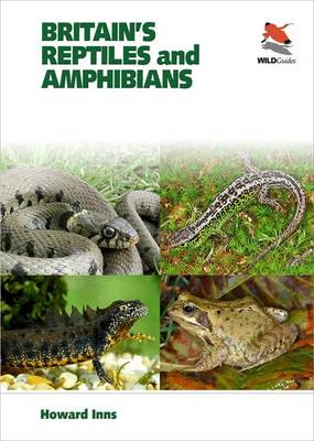 Picture of Britain's Reptiles and Amphibians: A Field Guide, Covering Britain, Ireland and Channel Islands