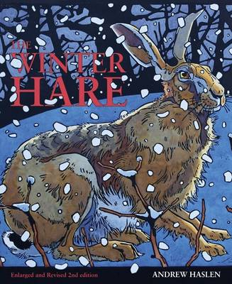 Picture of The Winter Hare