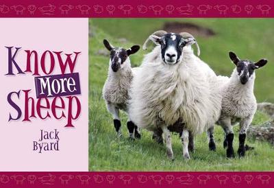 Picture of Know More Sheep