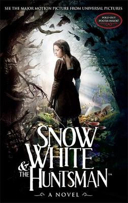 Picture of Snow White and the Huntsman