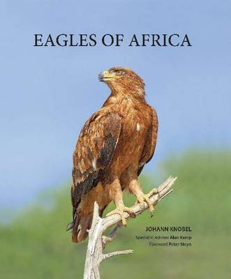 Picture of Eagles of Africa