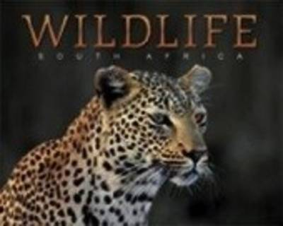 Picture of Wildlife South Africa