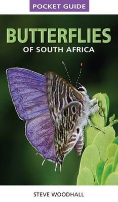 Picture of Pocket guide butterflies of South Africa