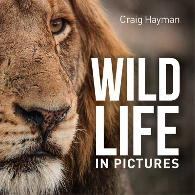 Picture of Wildlife in Pictures