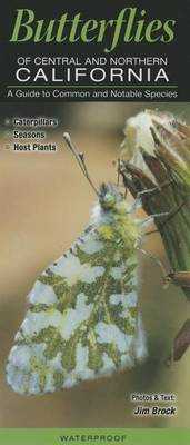 Picture of Butterflies of Central & Northern California  : A Guide to Common & Notable Species