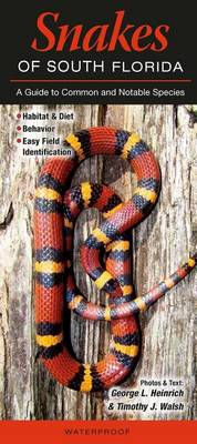 Picture of Snakes of South Florida: A Guide to Common & Notable Species
