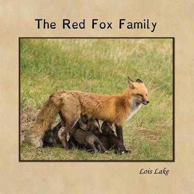 Picture of The Red Fox Family