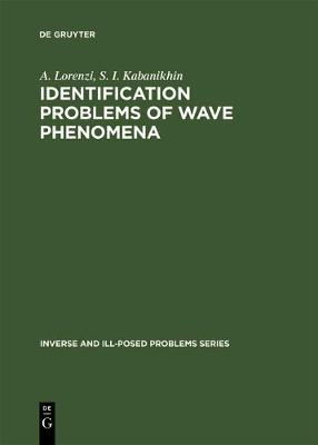 Picture of Identification Problems of Wave Phenomena: Theory and Numerics