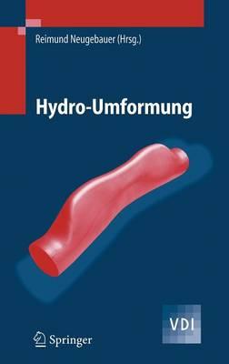 Picture of Hydro-Umformung