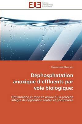 Picture of Dephosphatation Anoxique D Effluents Par Voie Biologique